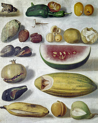 Bustos: Still Life, 1874 Art Print by Granger