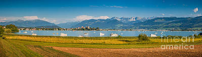 Photograph - Busy Times At Zurichsee by JR Photography