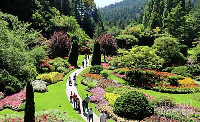 Photograph - Butchart Gardens  2589 by Jack Schultz