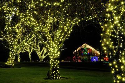 Photograph - Butchart Gardens Christmas 7 by Inge Riis McDonald