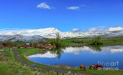 Pond Horses Photograph - Butte Farm After Spring Snow by Robert Bales