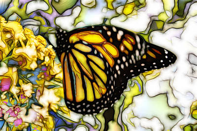 Digital Art - Butter Fly by Kevin  Sherf