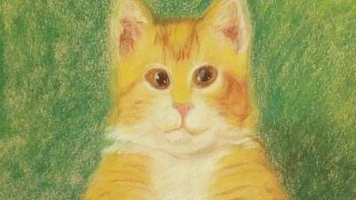 Drawing - Buttercup by Denise F Fulmer