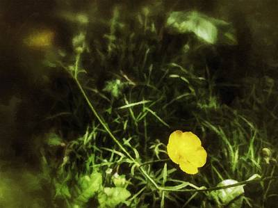 Mixed Media - Buttercup Glen by Isabella F Abbie Shores