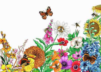 Photograph - Butterflies And Bees by Alan Baker IKON images