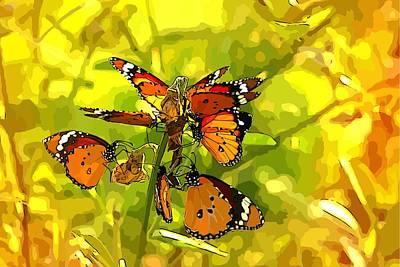 Photograph - Butterflies by Ankeeta Bansal
