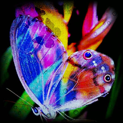 Winter Animals Rights Managed Images - Butterflies Are Free Royalty-Free Image by Digital Art Cafe