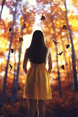Beautiful Butterfly Photograph - Butterflies by Chris M