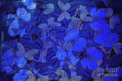 Photograph - Butterflies In Blue by Steven Parker