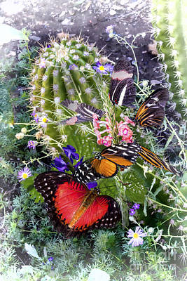 Digital Art - Butterflies In Desert Garden by Georgianne Giese