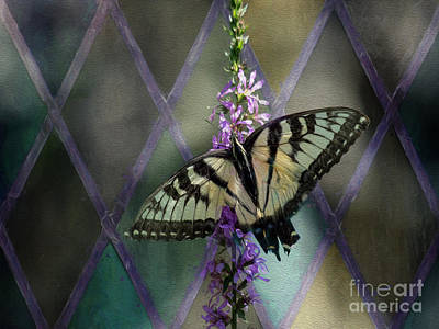 Stainglass Photograph - Butterflies Love Stain Glass by Linda Troski