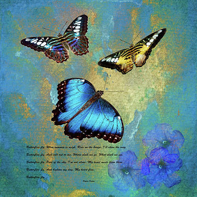 Photograph - Butterflies by Phyllis Denton