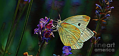 Photograph - Butterfly 18718 by Ray Shrewsberry