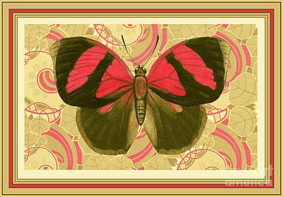 French Matting Painting - Butterfly 27 by Robert Todd