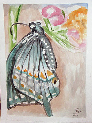 Painting - Butterfly 4 by Loretta Nash