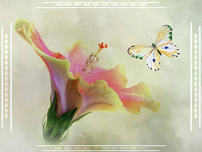 Butterfly And Fiesta Hibiscus Art Print