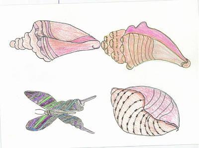 Butterfly And Seashells Art Print