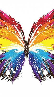 Painting - Butterfly  Art by Sheila Mcdonald
