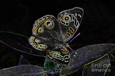 Digital Art - Butterfly Art by Steven Parker