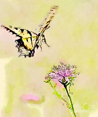 Watercolor Painting - Butterfly Art - Tiger Swallowtail On Approach by Kerri Farley