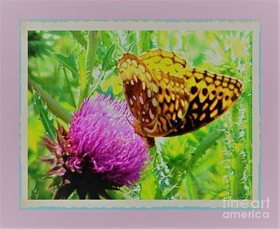 Photograph - Butterfly Balance by Shirley Moravec