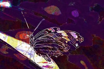 Digital Art - Butterfly Beautiful Nature Garden  by PixBreak Art