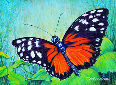 Painting - Butterfly Beauty by Tanja Ware