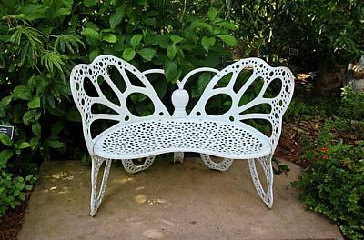 Photograph - Butterfly Bench I by Michiale Schneider