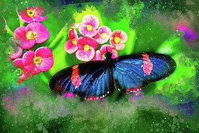 Photograph - Butterfly Blues by Kay Brewer