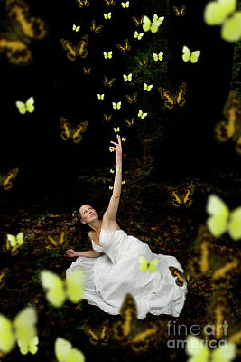 Photograph - Butterfly Bride by Clayton Bastiani