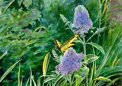Watercolor. Butterfly Painting - Butterfly Bush by Tom Hedderich