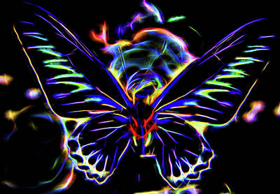 Digital Art - Butterfly  by Cathy Anderson