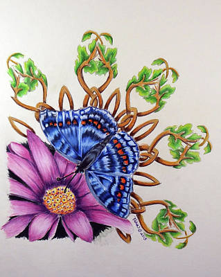 Wiccan Drawing - Butterfly-celtic Design-celtic Zodiac by Kathy Stocks