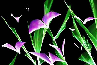 Digital Art - Butterfly  by David Lane