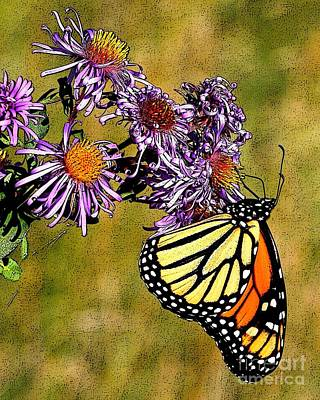 Butterfly Delight Art Print by Diane E Berry