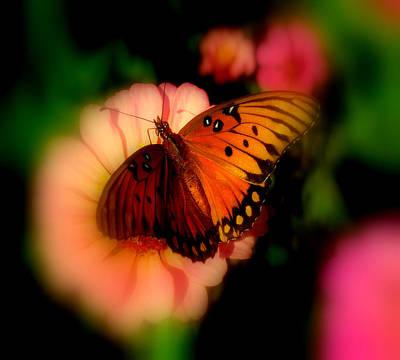 Butterfly Dreams Art Print by Dottie Dees