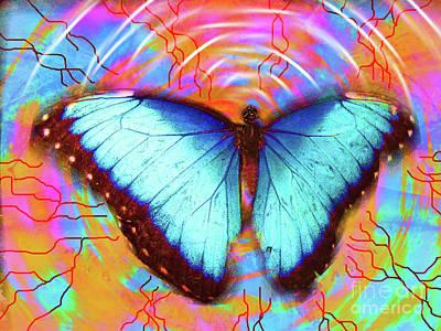 Fluttering Photograph - Butterfly Dreams by Robert Ball