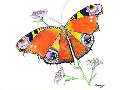 Butterfly Dressed For A Masquerade Ball Art Print