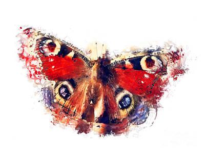 Bear Photography - Butterfly European Peacock by Justyna Jaszke JBJart