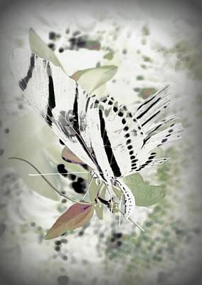 Digital Art - Butterfly Fade by David Mckinney