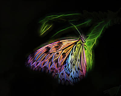 Digital Art - Butterfly Fantasy 1a by Walter Herrit