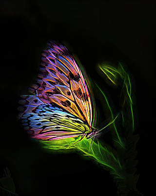 Digital Art - Butterfly Fantasy 2a by Walter Herrit