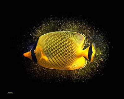 Butterfly Fish 001 Art Print