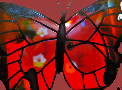 Marvelous View Digital Art - Butterfly Florals  Collection B by Debra     Vatalaro