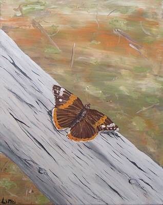 Butterfly Flutter-sunbathing Original by Beth Lippai