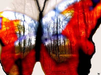Marvelous View Digital Art - Butterfly Forest  C by Debra     Vatalaro