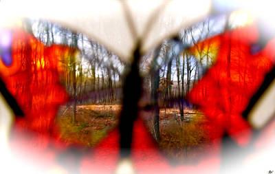 Aesthetic Appeal Image Digital Art - Butterfly Forest Q by Debra     Vatalaro