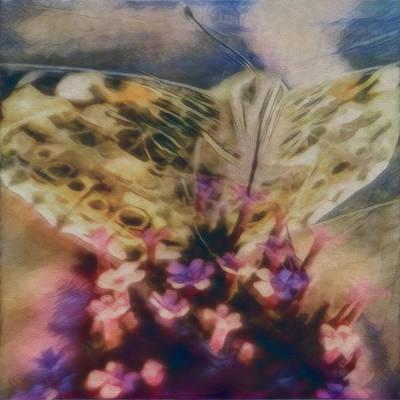 Digital Art - Butterfly Garden by Kae Art