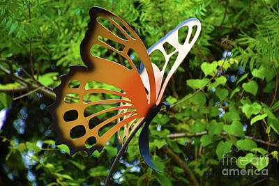 Photograph - Butterfly Garden by Ray Shrewsberry