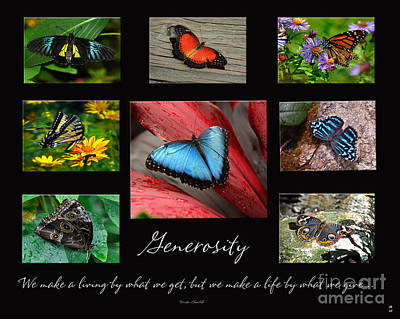 Art Print featuring the photograph Butterfly Generosity Collage by Diane E Berry